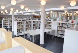 пример 15 мебель для библиотеки на заказ
