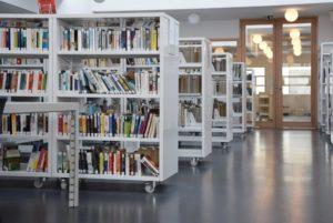 пример 16 мебель для библиотеки на заказ