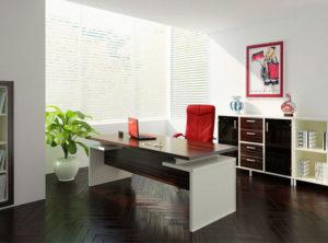 пример 17 мебель для кабинета на заказ