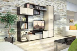 пример 23 мебель для гостиной на заказ
