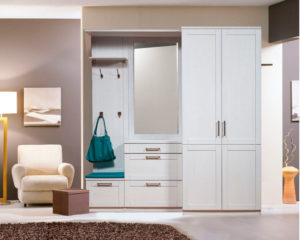 пример 25 мебель для прихожей на заказ