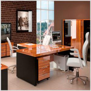 пример 29 мебель для кабинета на заказ
