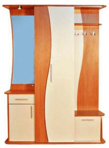 пример 7 мебель для прихожей на заказ