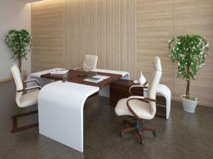 пример 8 мебель для кабинета на заказ